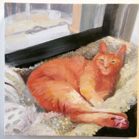 Pet Portrait 2015