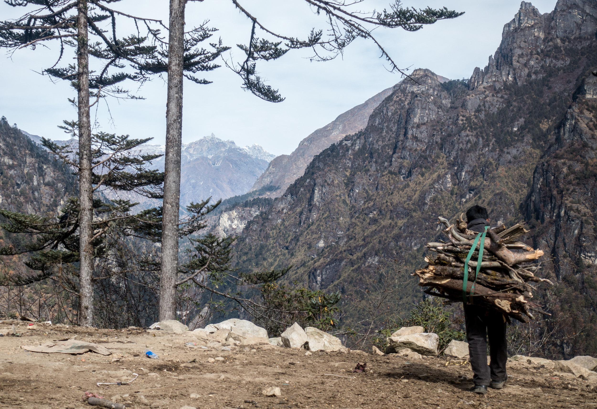 Bhutan 2017-02098.jpg