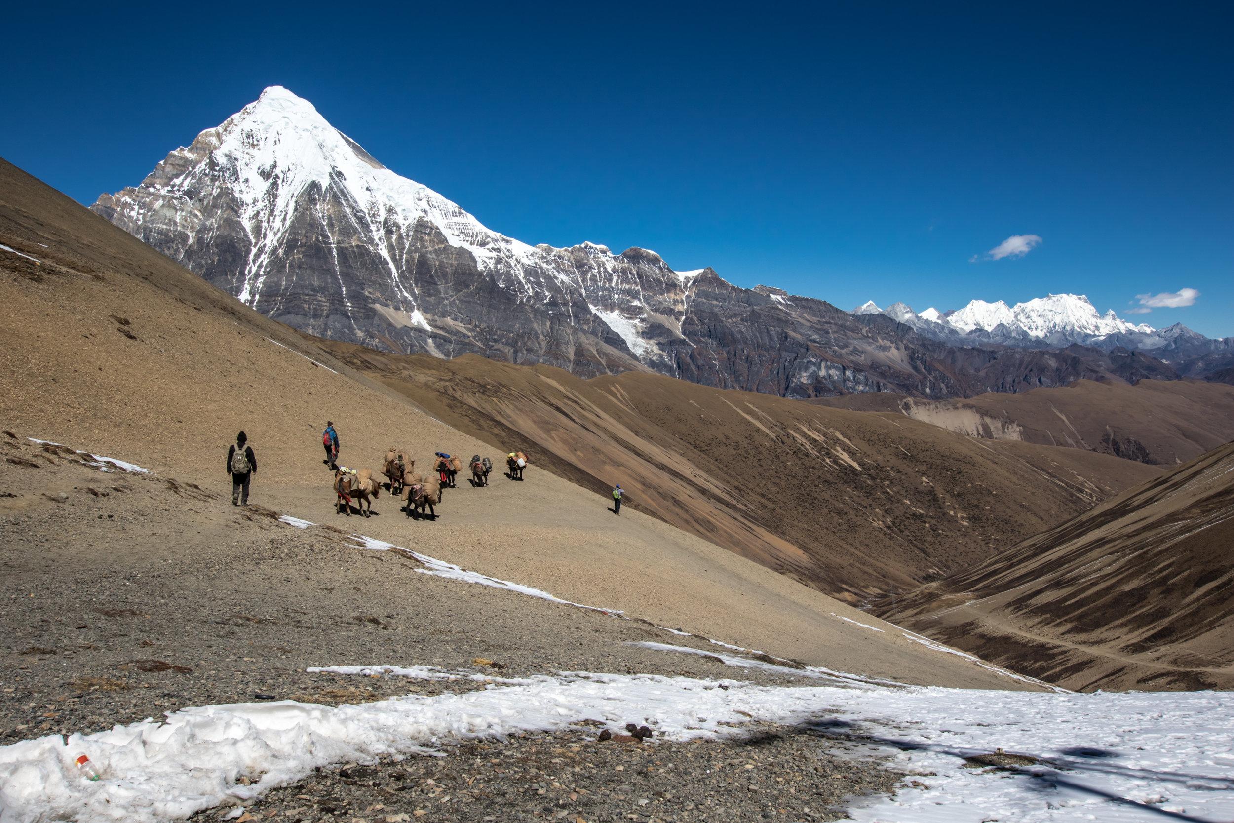 Bhutan 2017-9325.jpg