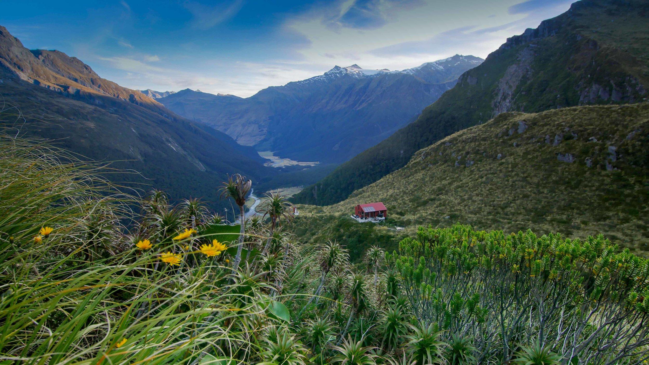 Liverpool Hut New Zealand Lake Wanaka Mount Aspiring (1 of 4).jpg