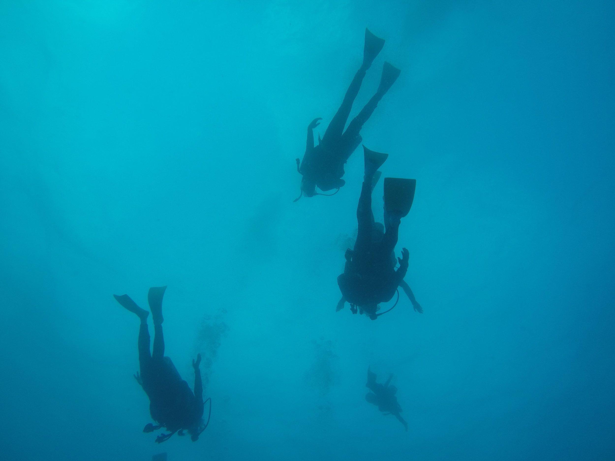 Great Barrier Reef Australia,