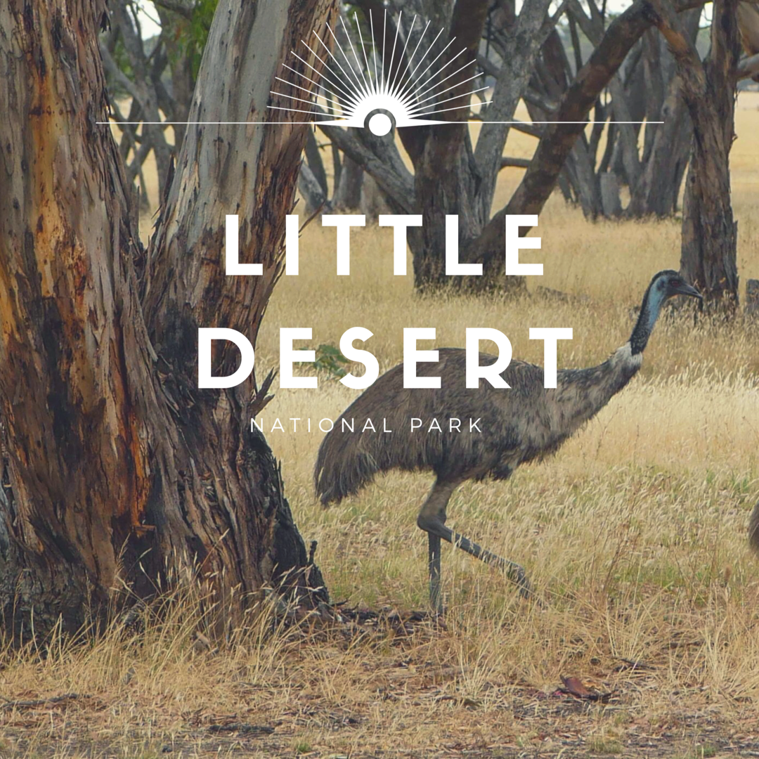Little Desert NP - Enjoy the five billion star view with entire campsite to yourself and some Emu Families.he park is located about three and a half hours west of the Grampians.