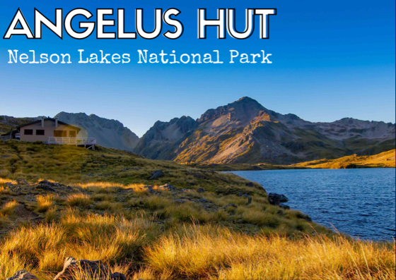 Angelus Hut - There is an extensive hut system in the Nelson Lakes area. So, there are many approaches you can take to this particular hut. We came up Robert's Ridge and it was exactly what we were looking for on our first experince in the South Island.