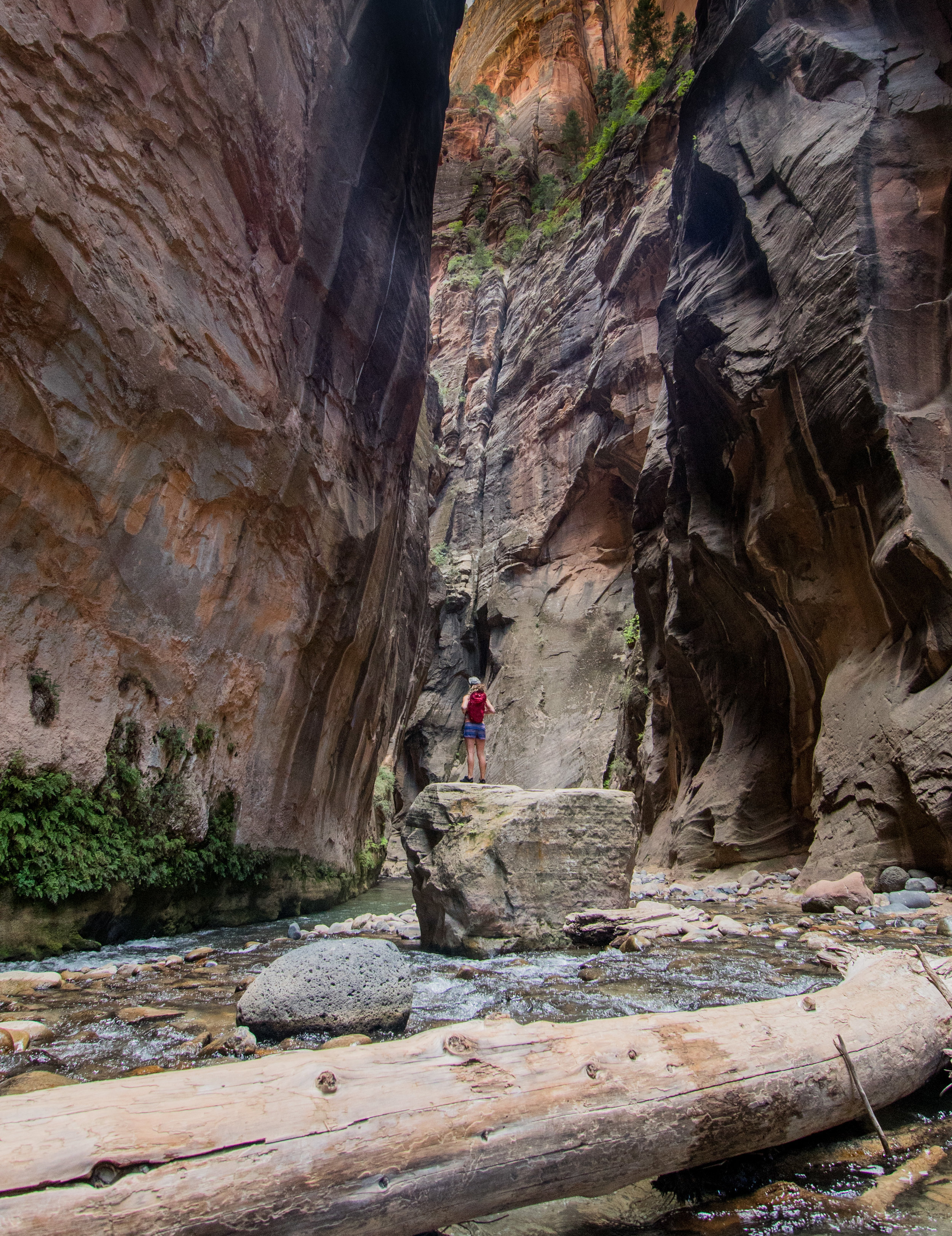 narrows hiking in summer what to bring  rentals equipment (1 of 1).jpg