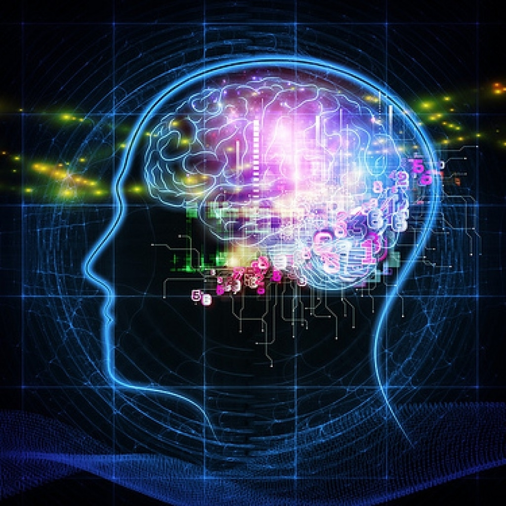 brainpower-1024x1024.jpg