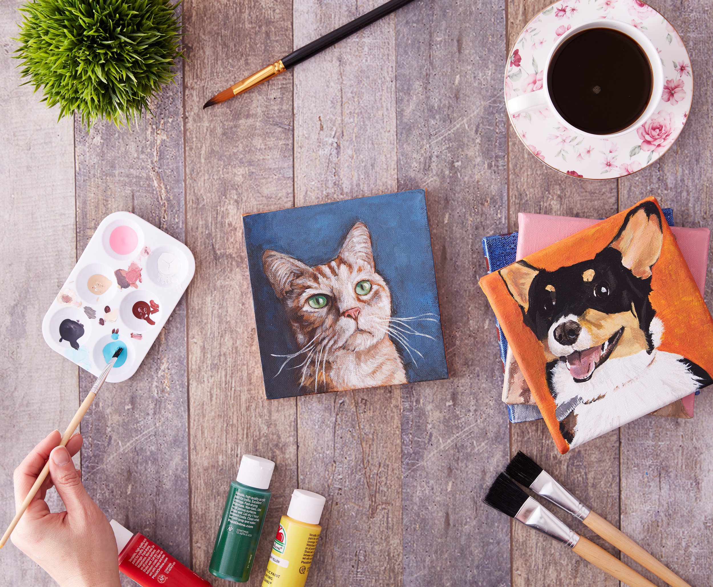 A commercial, lifestyle, fashion, advertising image of paintings of cats and dogs, featuring paint brushes, various paints and window lighting-  taken by Javier Edwards of El Roi Photo, in Miami, Florida