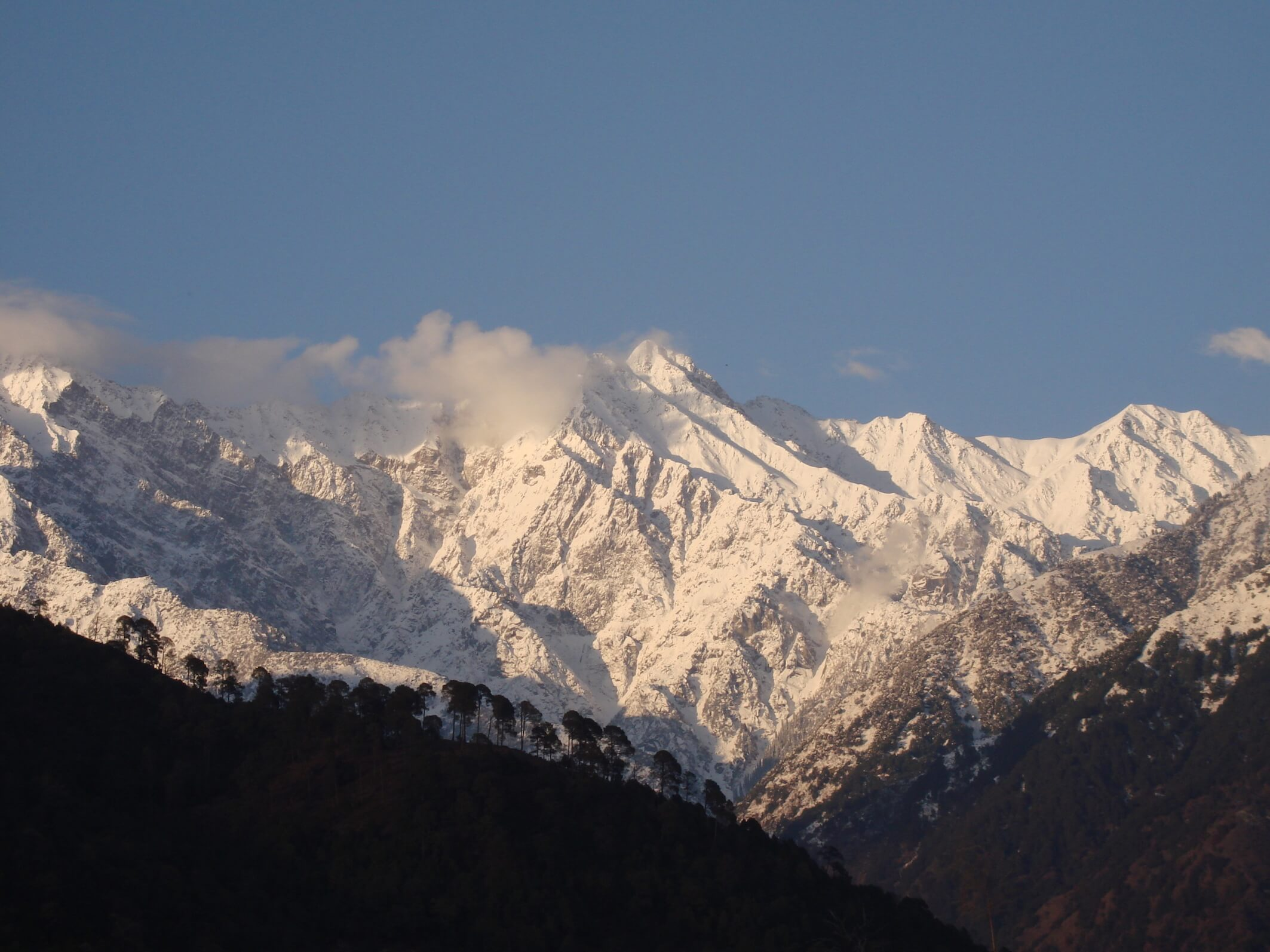The snow-capped Dhauladhar range