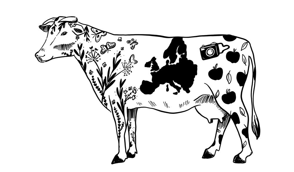 EU land-use