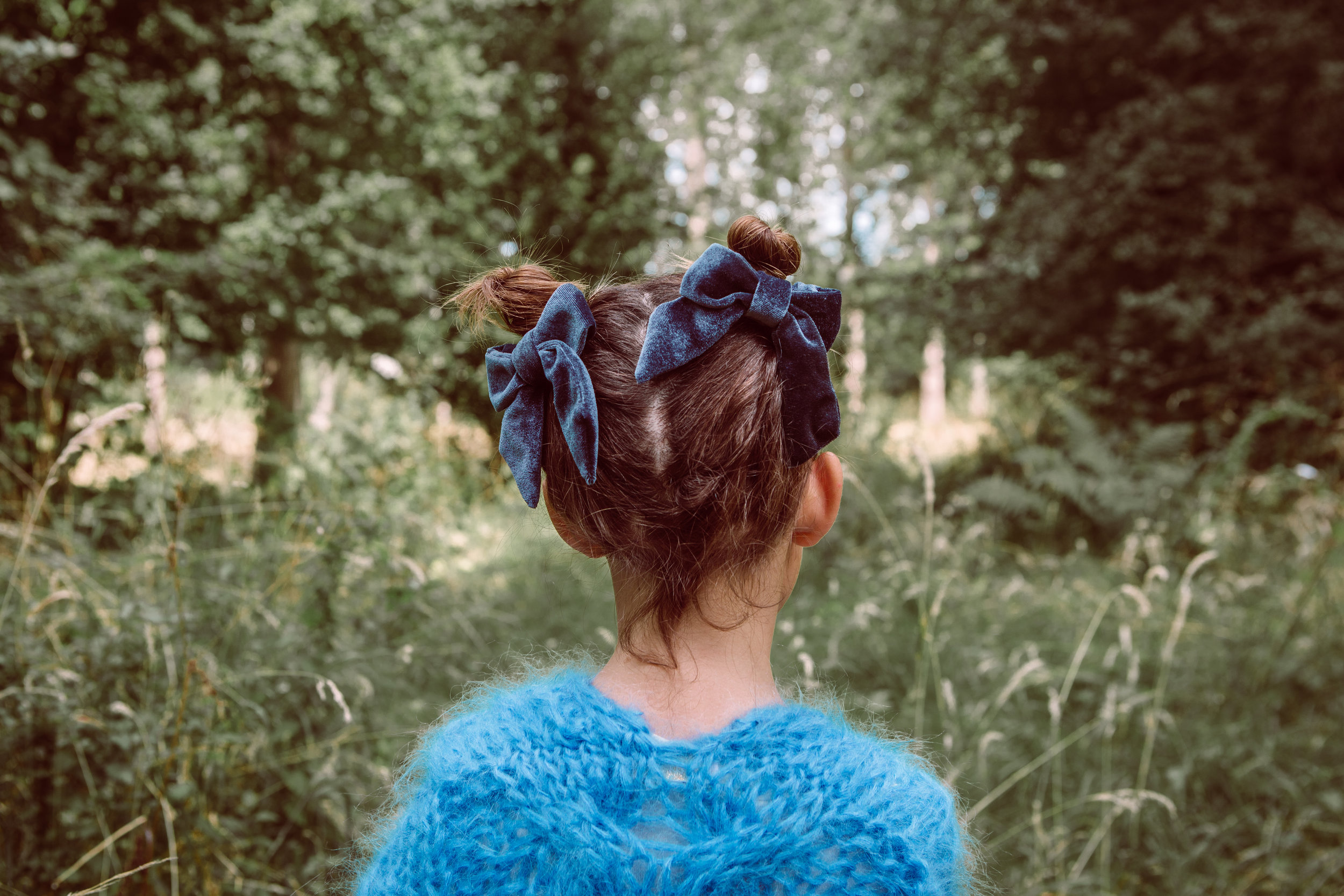 Alexa bows - blue
