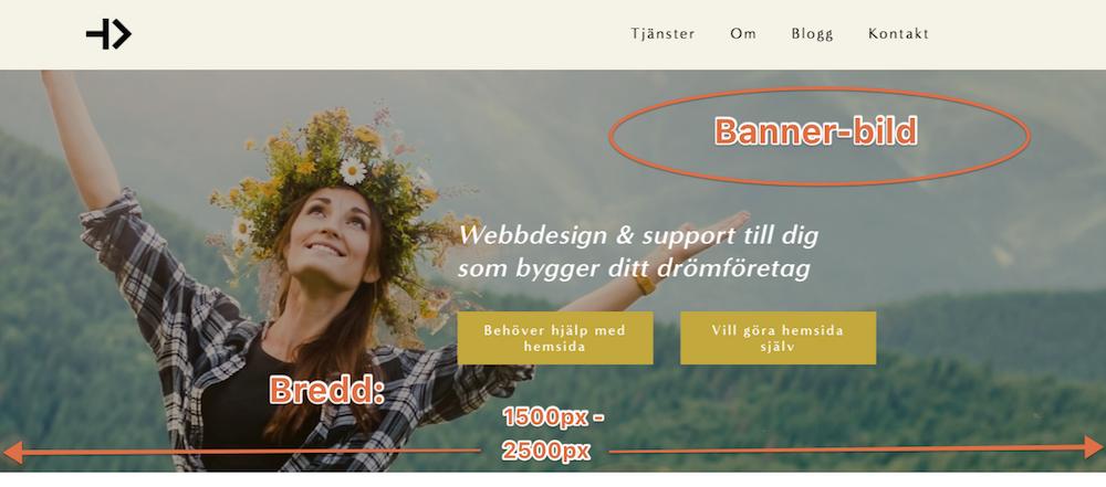Bildstorlek. Optimera bilder för hemsidan.