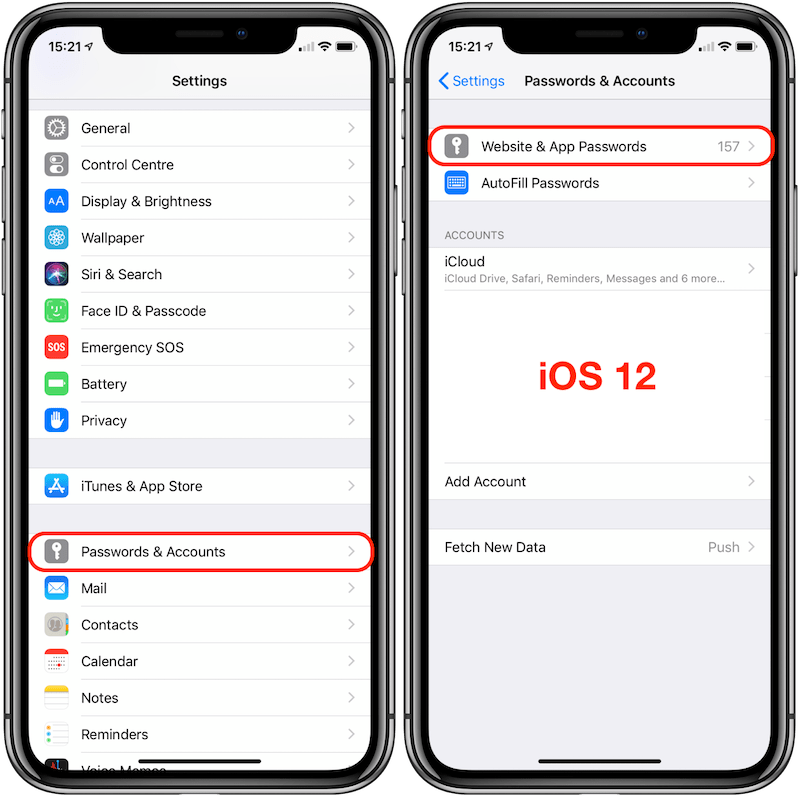 MP07 - iOS 12 iPhone X - Passwords & Accounts Annotated 800px.png