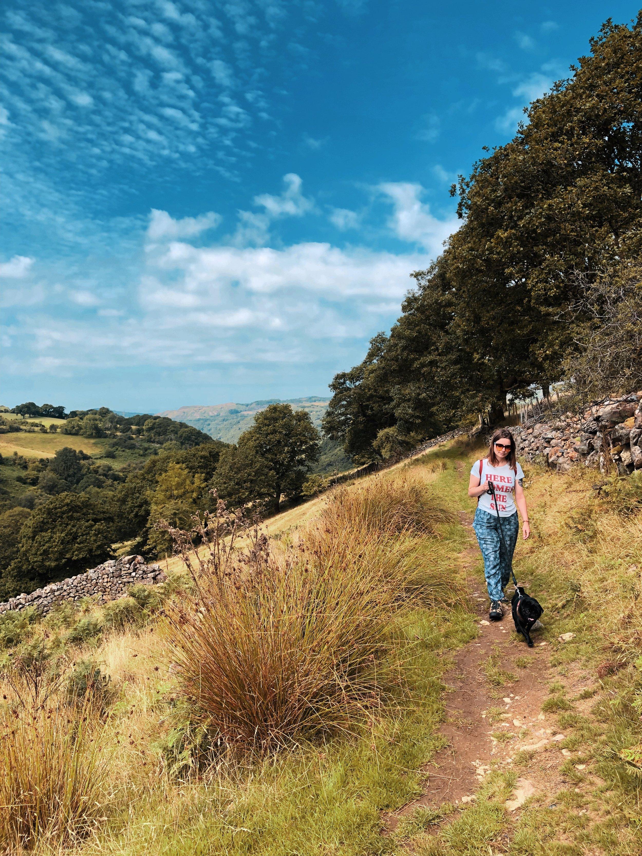 Walking through farmlands towards the rushing Cynfall waters