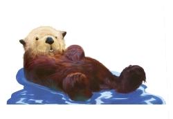 _Otter_Color_Hi.jpg