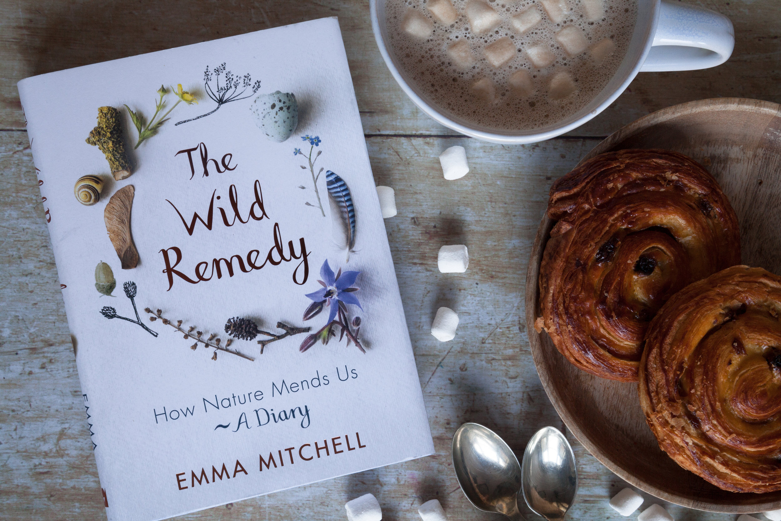 The Wild Remedy: How Nature Mends Us, A Diary by Emma Mitchell