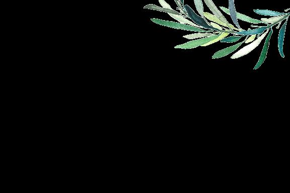 mediterranean salad.png