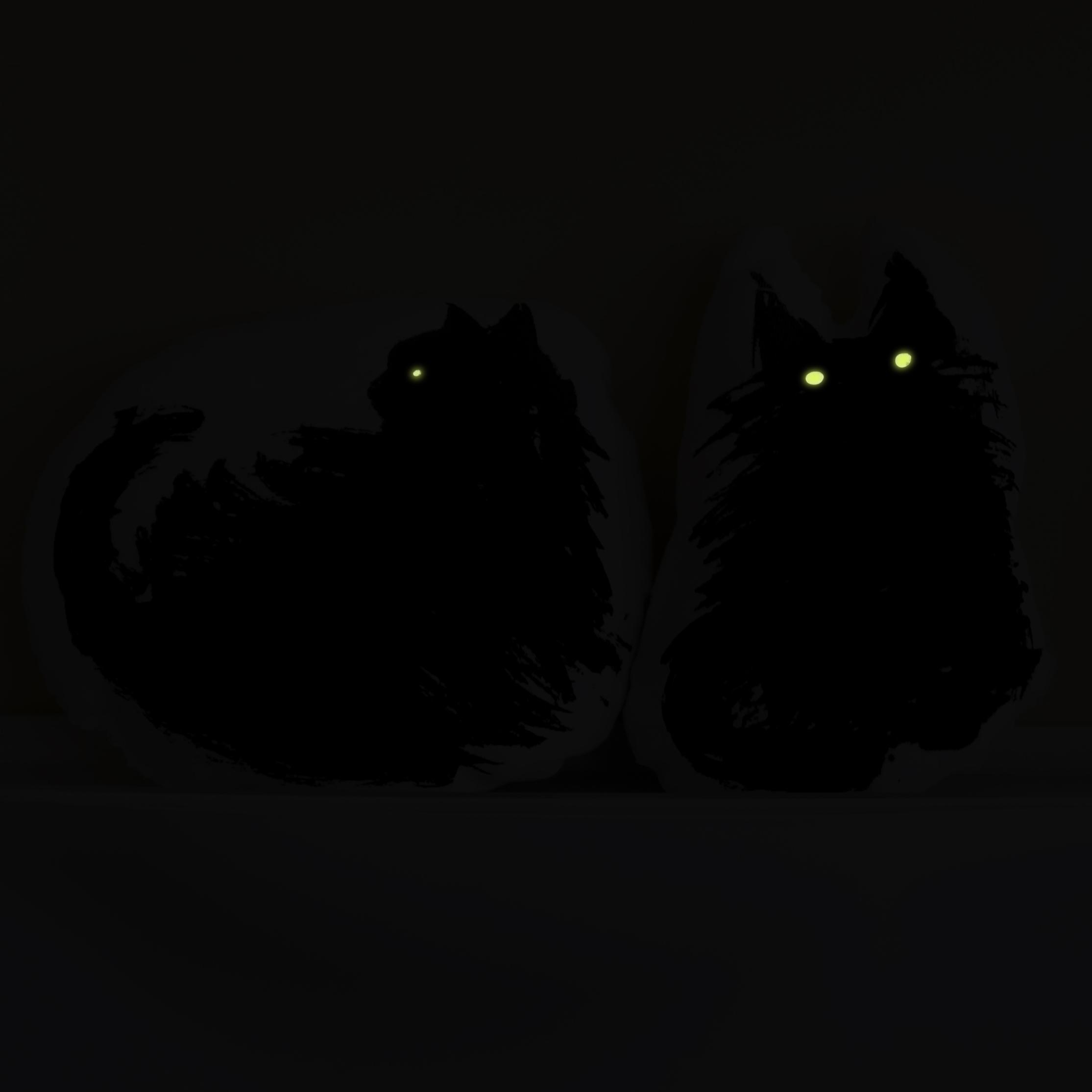 StuffedCats-night.jpg