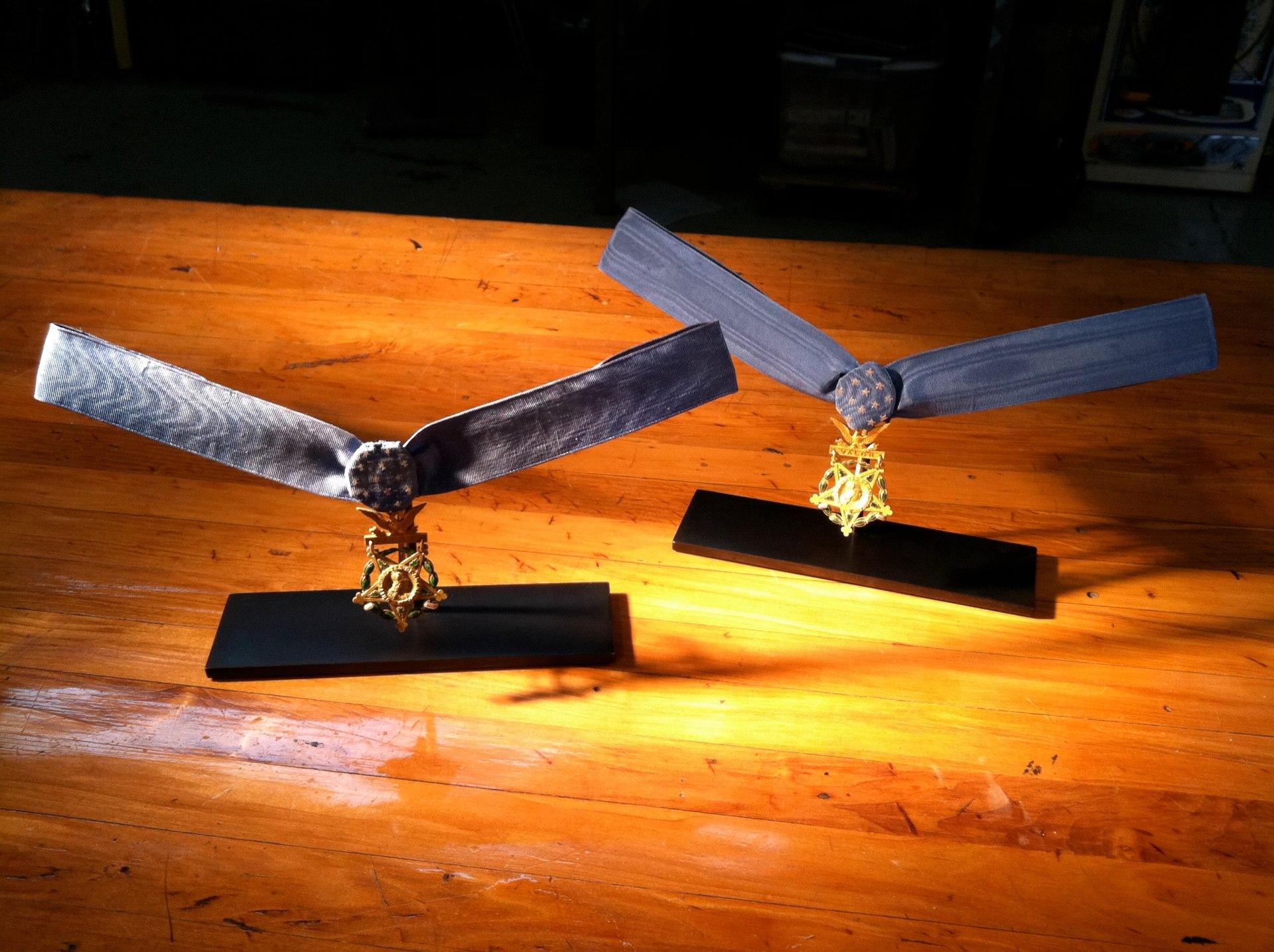 Medal Of Honor Mount.jpg