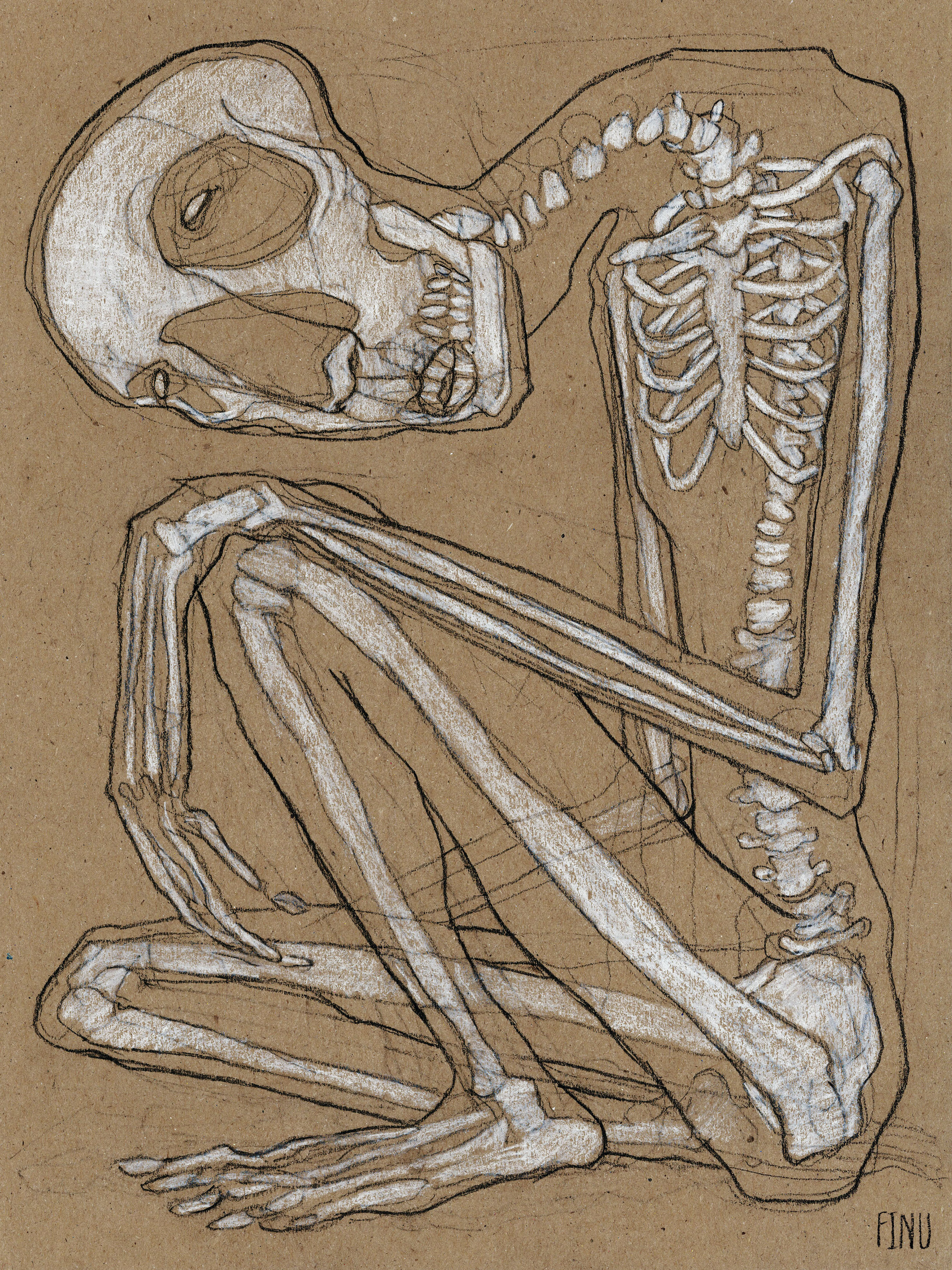 """BONES  Charcoal and pastel on kraft paper, 9 x 12"""", 2017"""