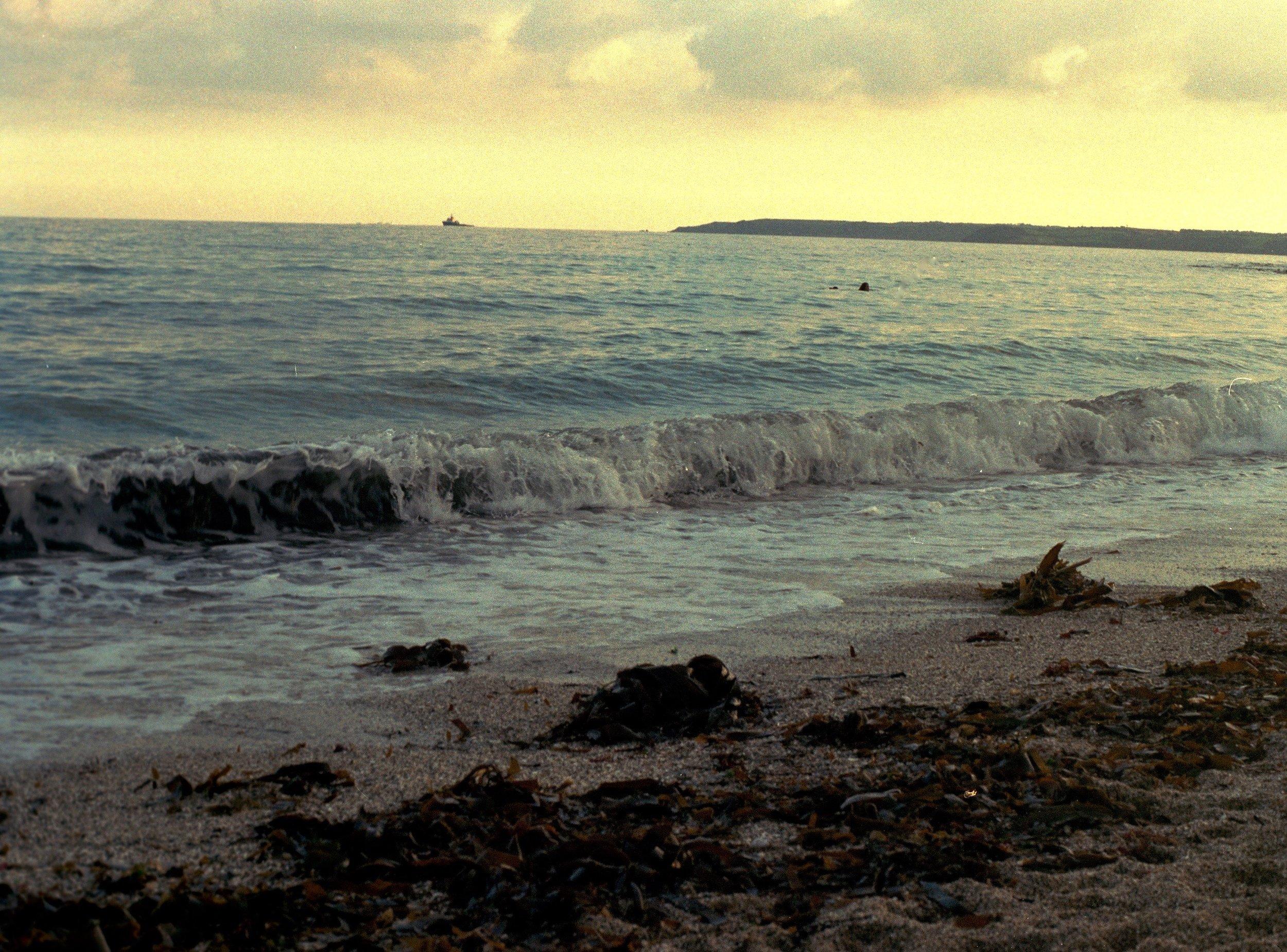 beach3 (1).jpg