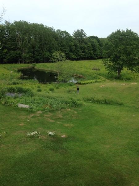 Meg pond.jpg