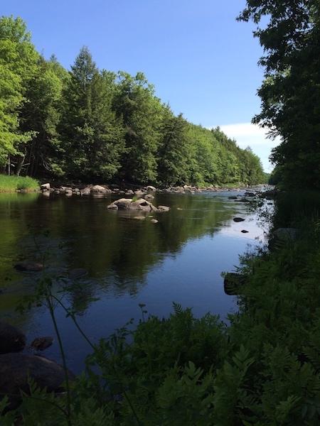 river copy.jpg