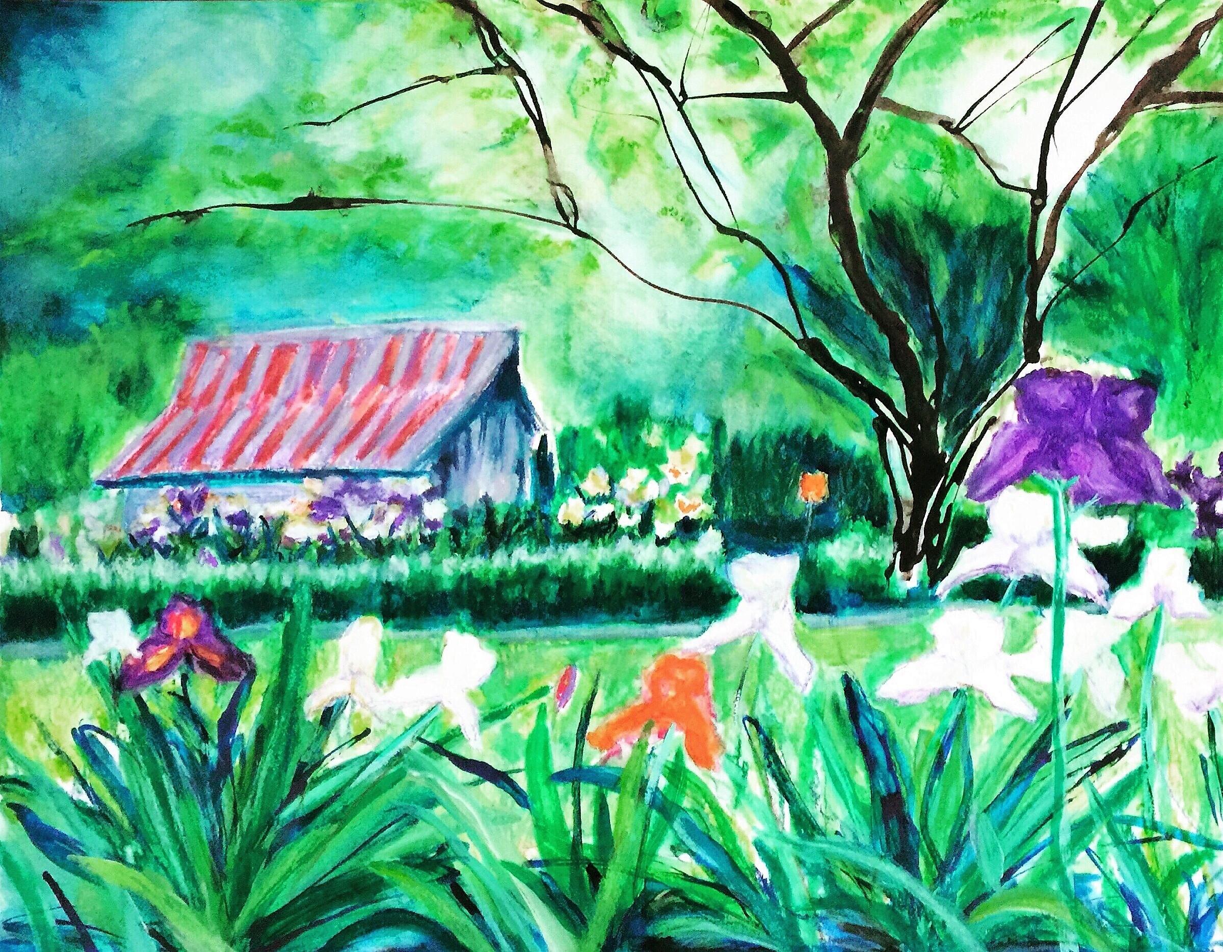 Martha's Iris Garden