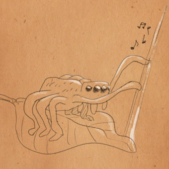 A Pocket Fiddler plucking on its webbing to attract a mate.