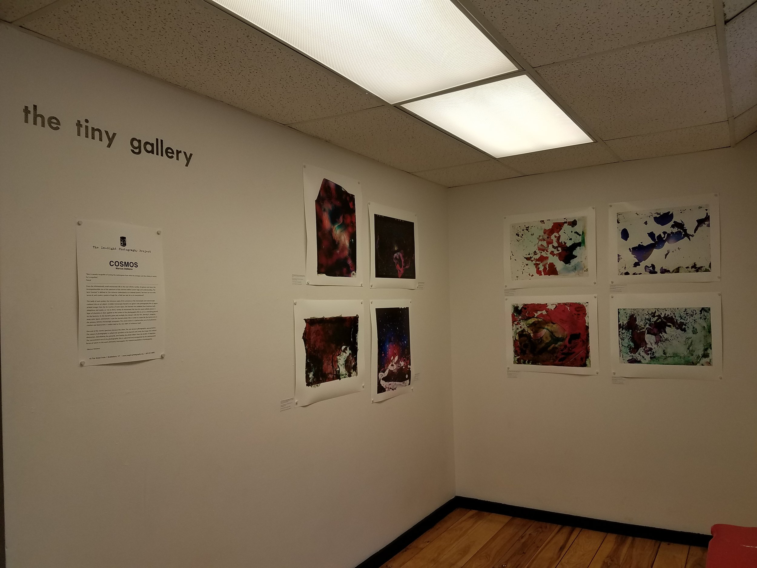 Installation shot of the Tiny Gallery
