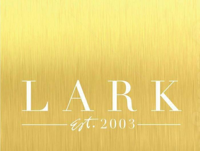 Lark Photo.jpg