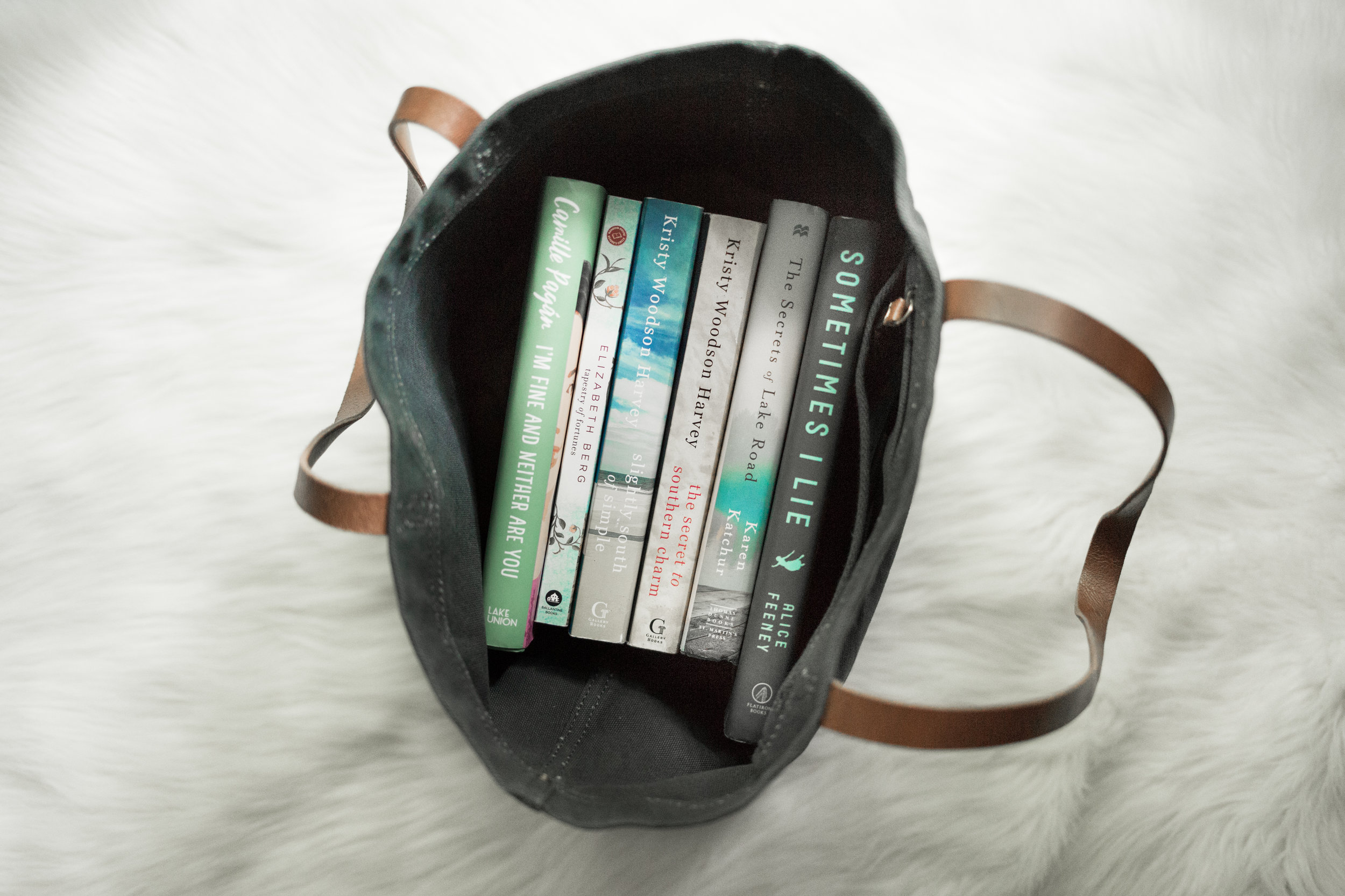 A Book In Her Purse Book Blog Carolyn Emily Hommes Carolyn Emily Photography Nashville Tennessee Book Haul McKays