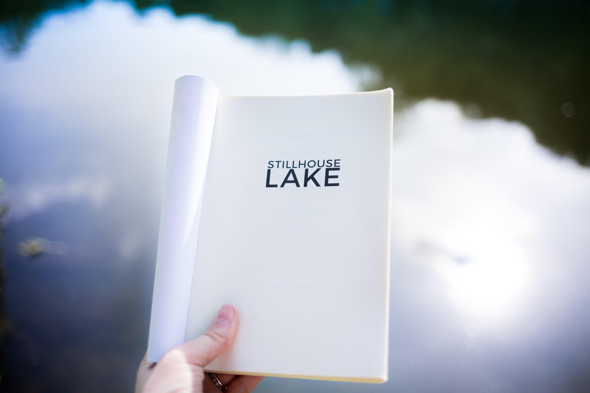 Stillhouse Lake Rachel Caine Thomas and Mercer Book Review A Book In Her Purse Book Blog Carolyn Emily Hommes Carolyn Emily Photography Nashville Tennessee