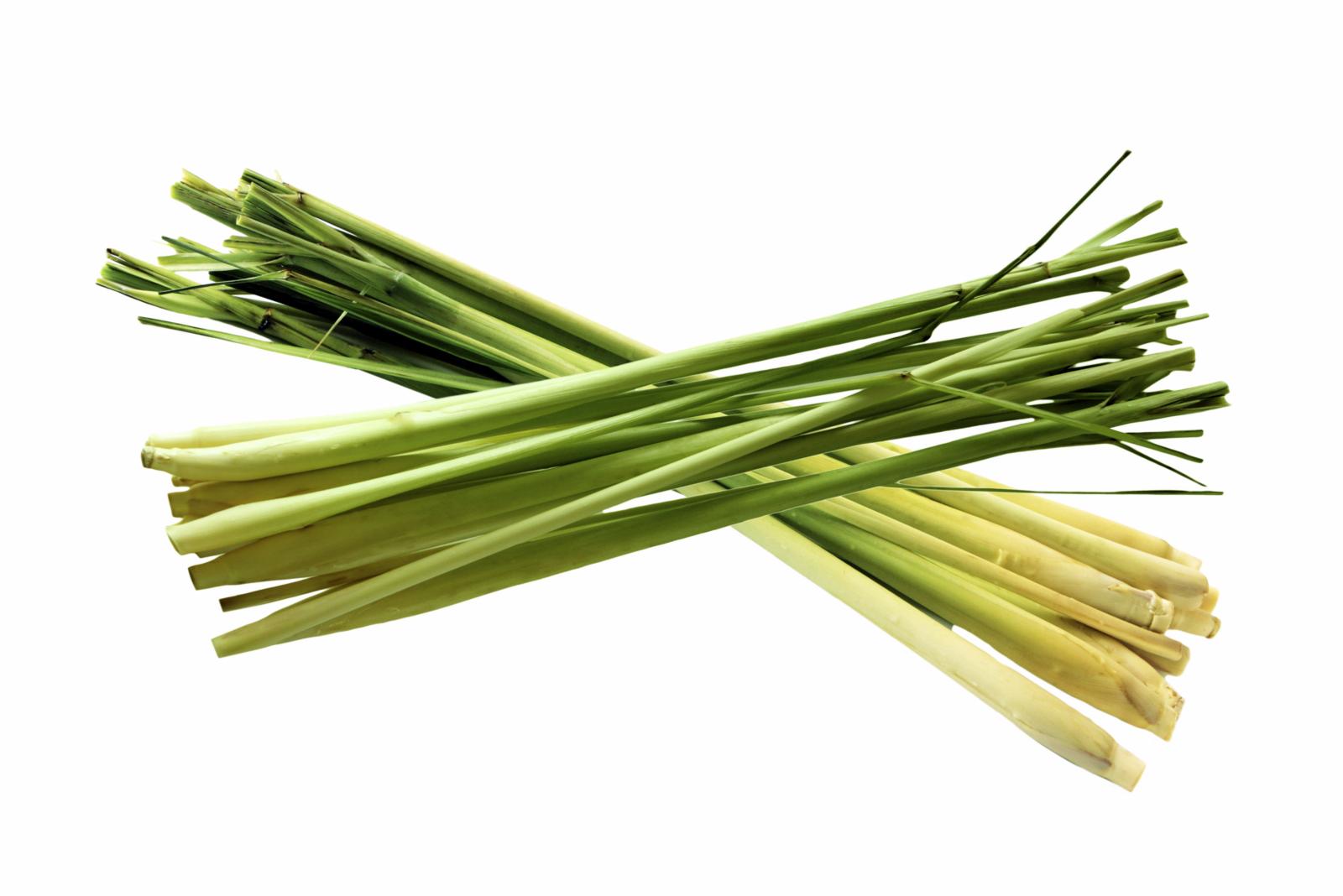 lemongrass.png