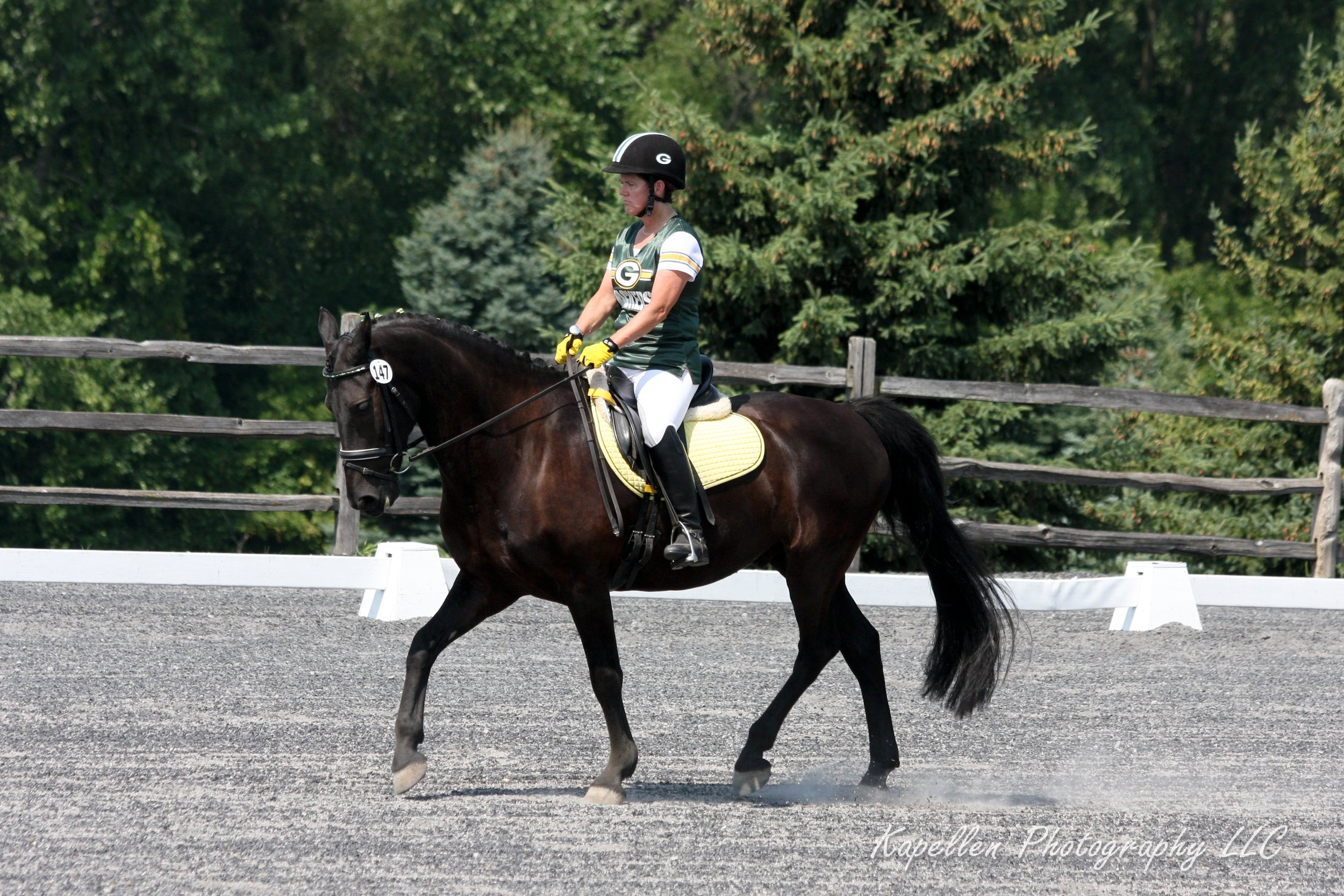 Lori Fisher - After years of showing dressage, Lori has recently become passionate about the Working Equitation sport. Photo showing Lori, a Green Bay Wisconsin native, riding to a musical freestyle she choreographed to football music.