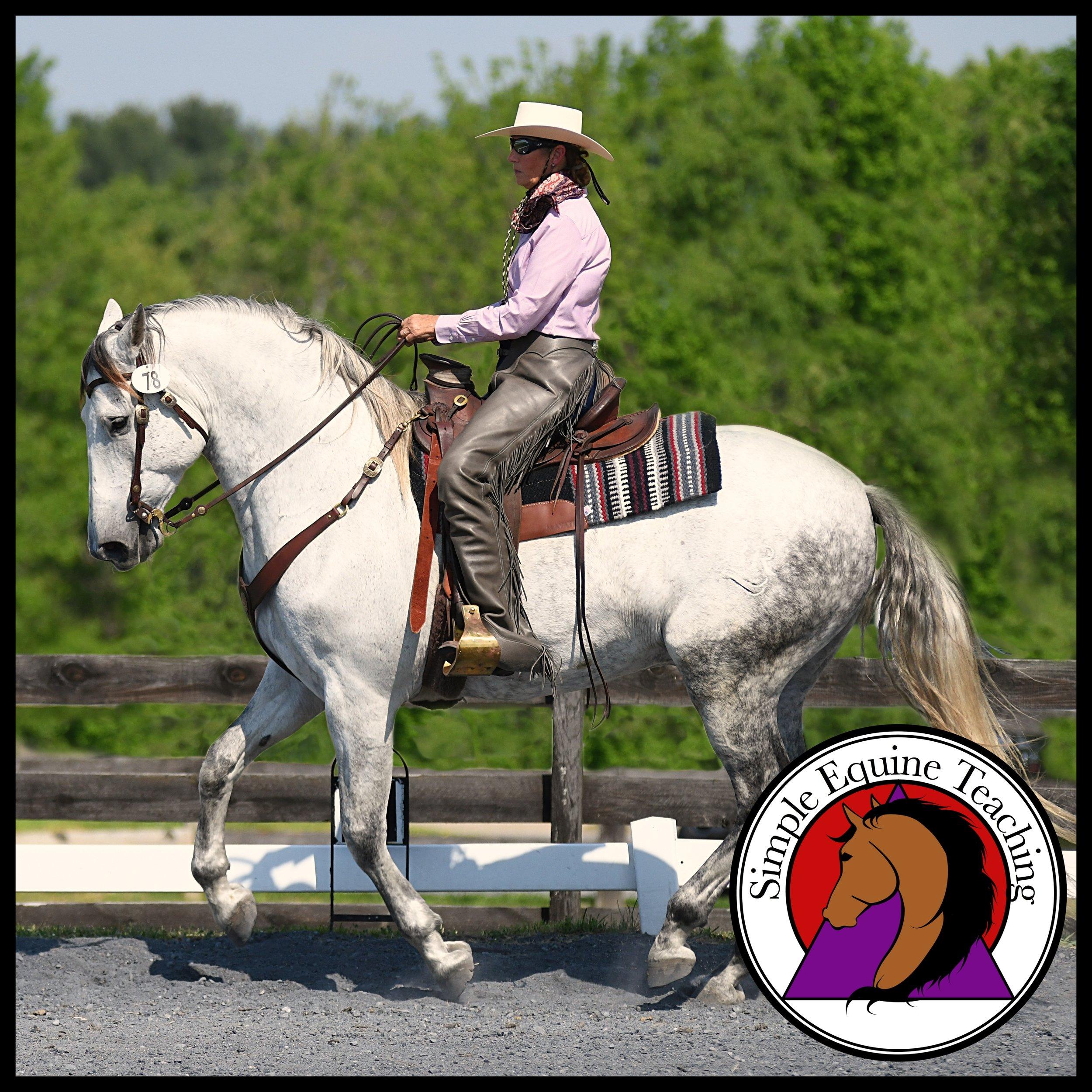 Dee Janelle - Simple Equine Teaching  Photo credit: Jaime McArdle