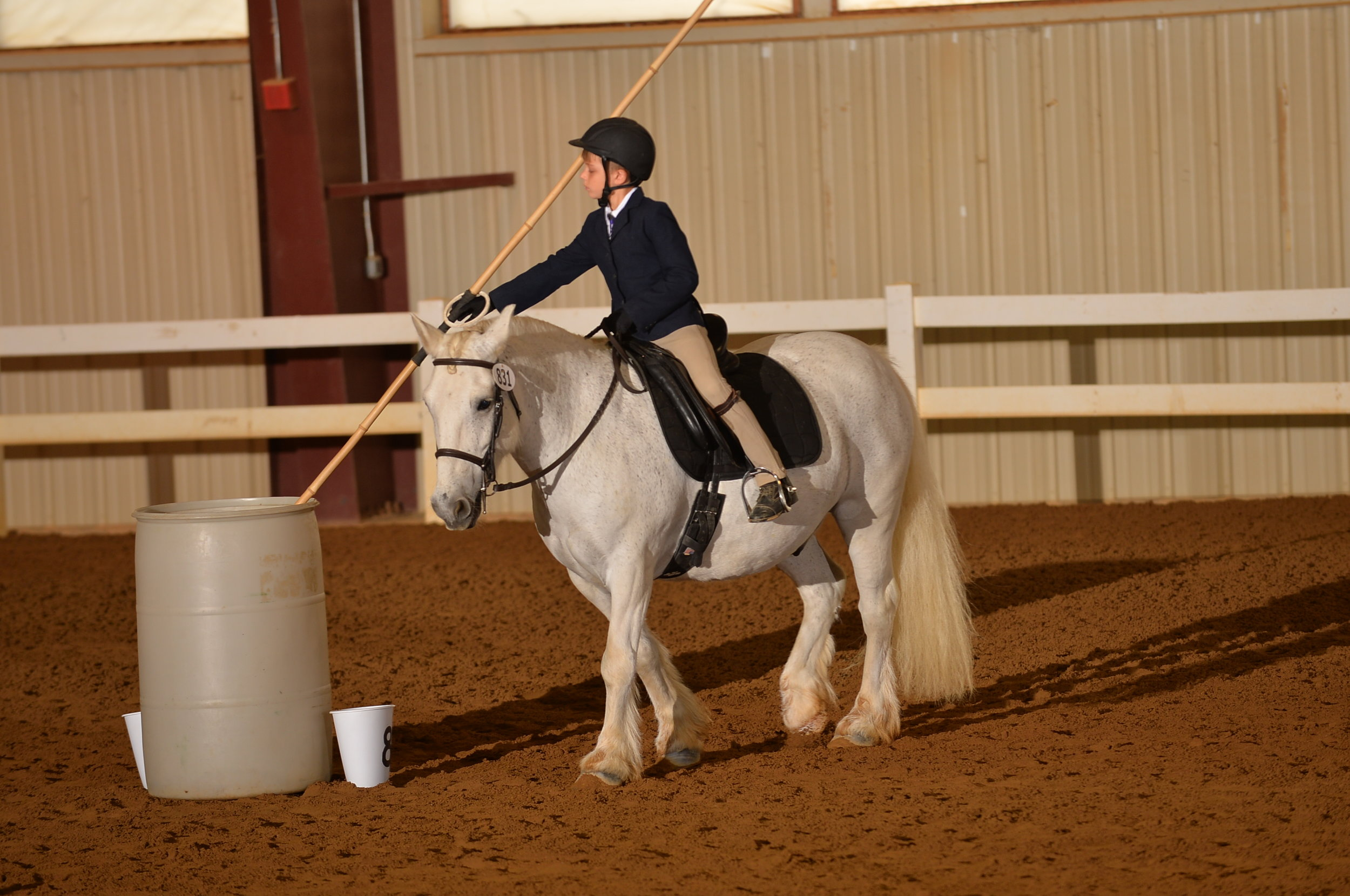 Cadence Equine Alliance LLC - - Two equi simulator sessions
