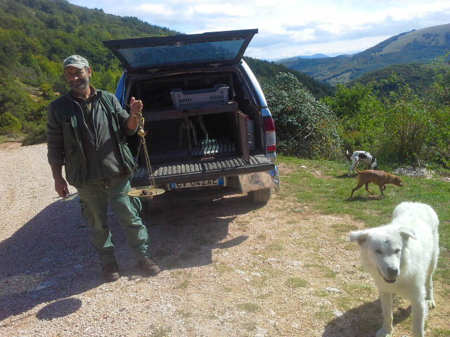 truffle hunter.jpg