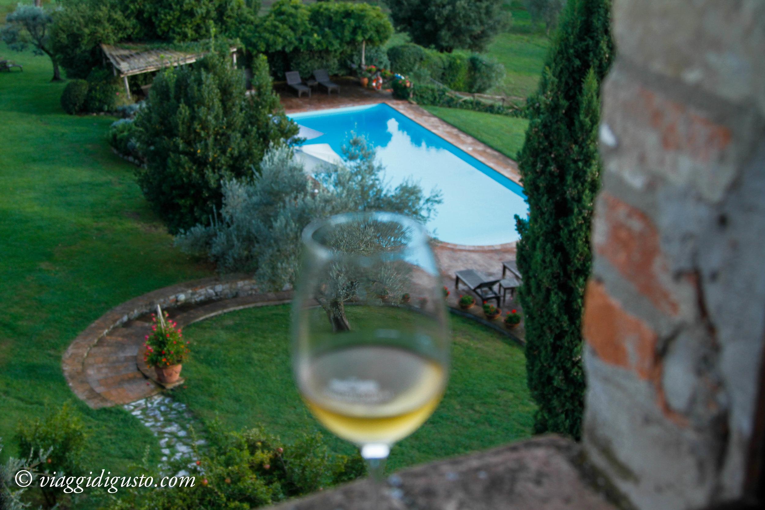 wine glass tenuta canonica.jpg