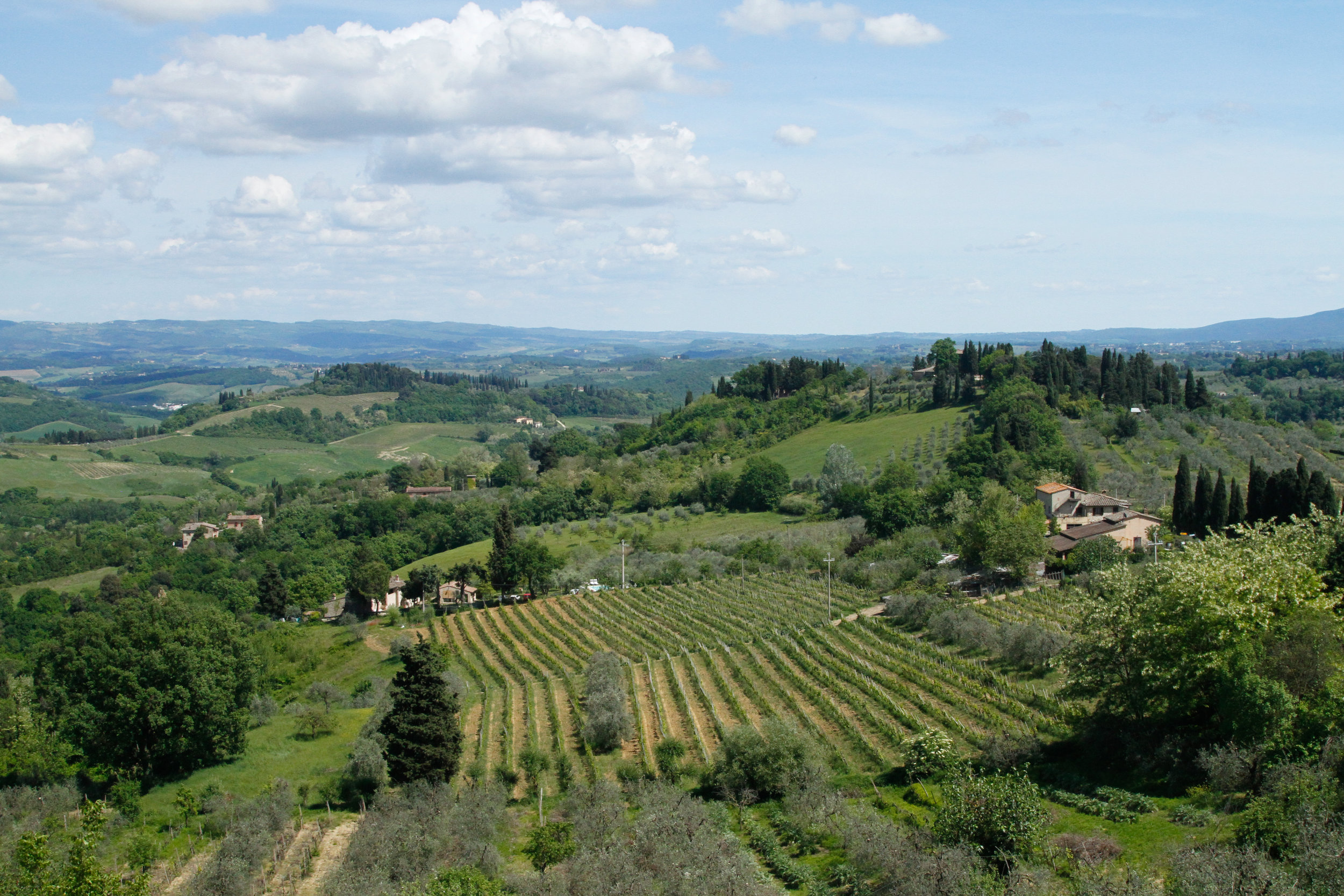 tuscan countryside.jpg