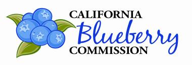Blueberry-Logo-Color-e1423268188842.jpg
