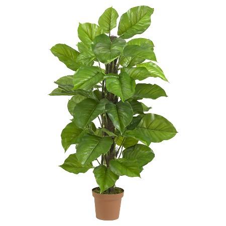large leaf 52%22.jpeg