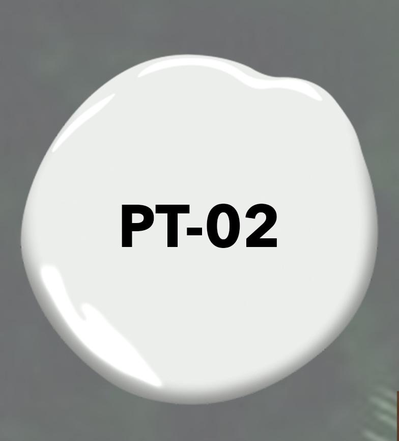PT-02.jpg