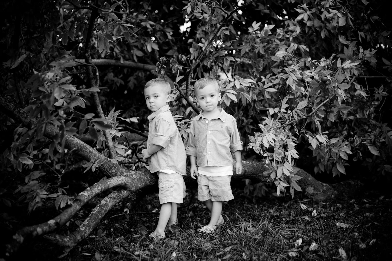 Twins by Lewisburg, PA photographers