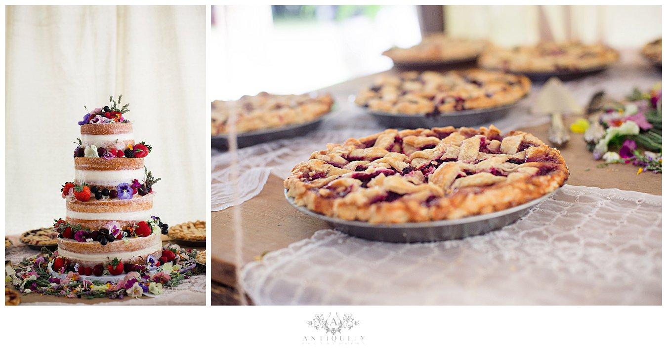 Bloomsburg Wedding photographers_0276.jpg