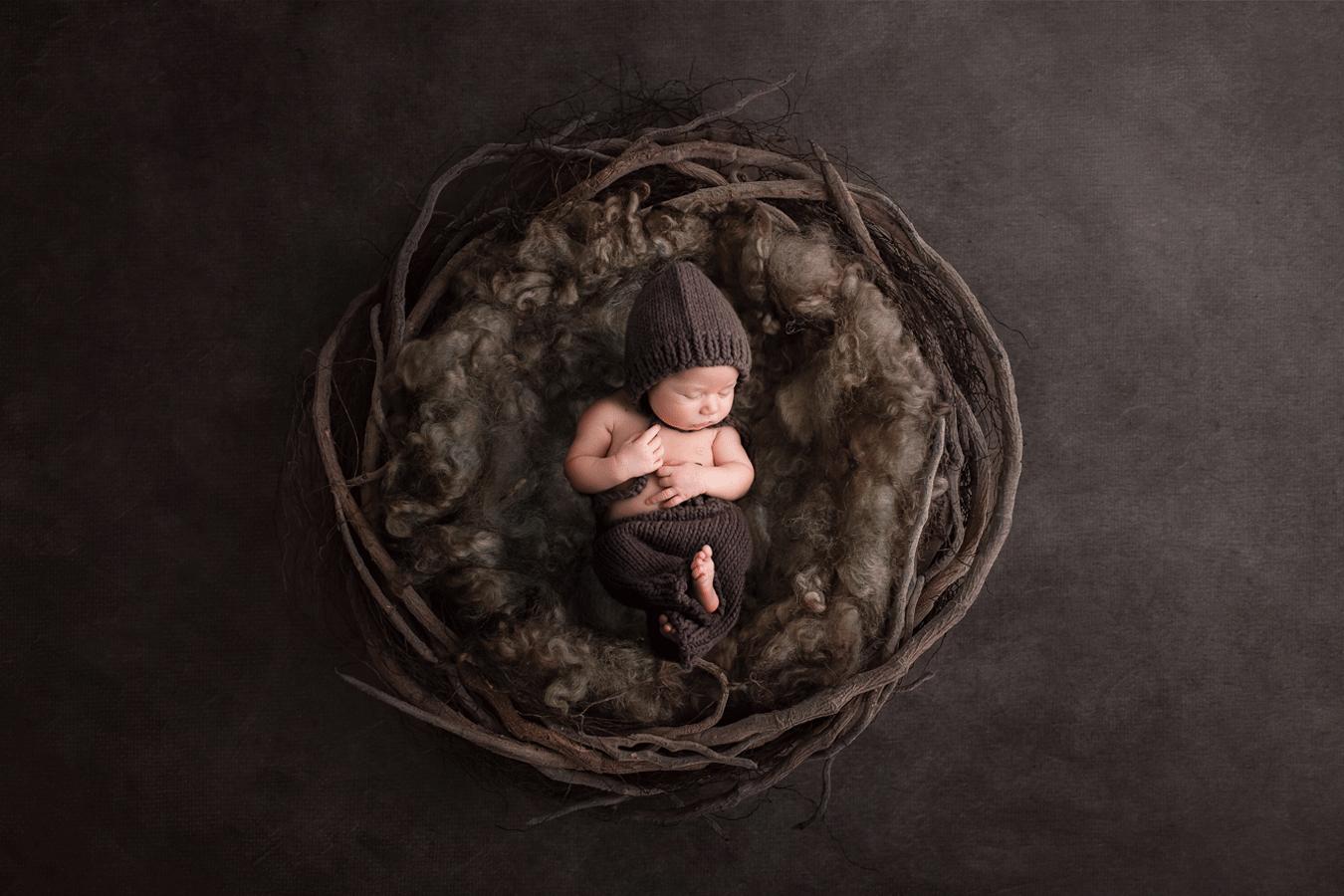 Williamsport baby photographers