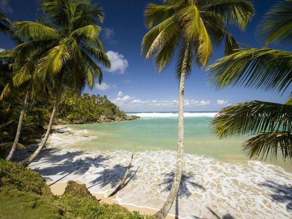 dominican republic.jpg
