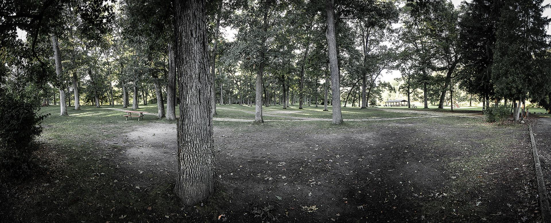 simpson-h-woods-creep-1-iphone-16-min.jpg