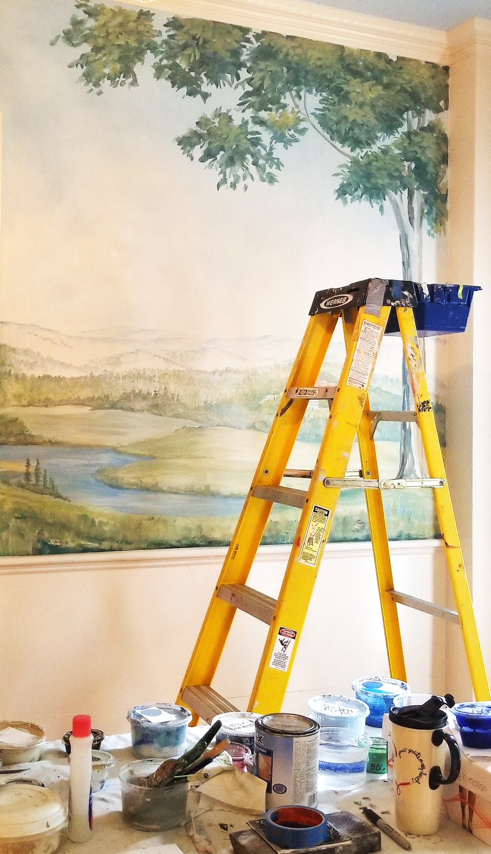 Custom mural by Judy Dibble
