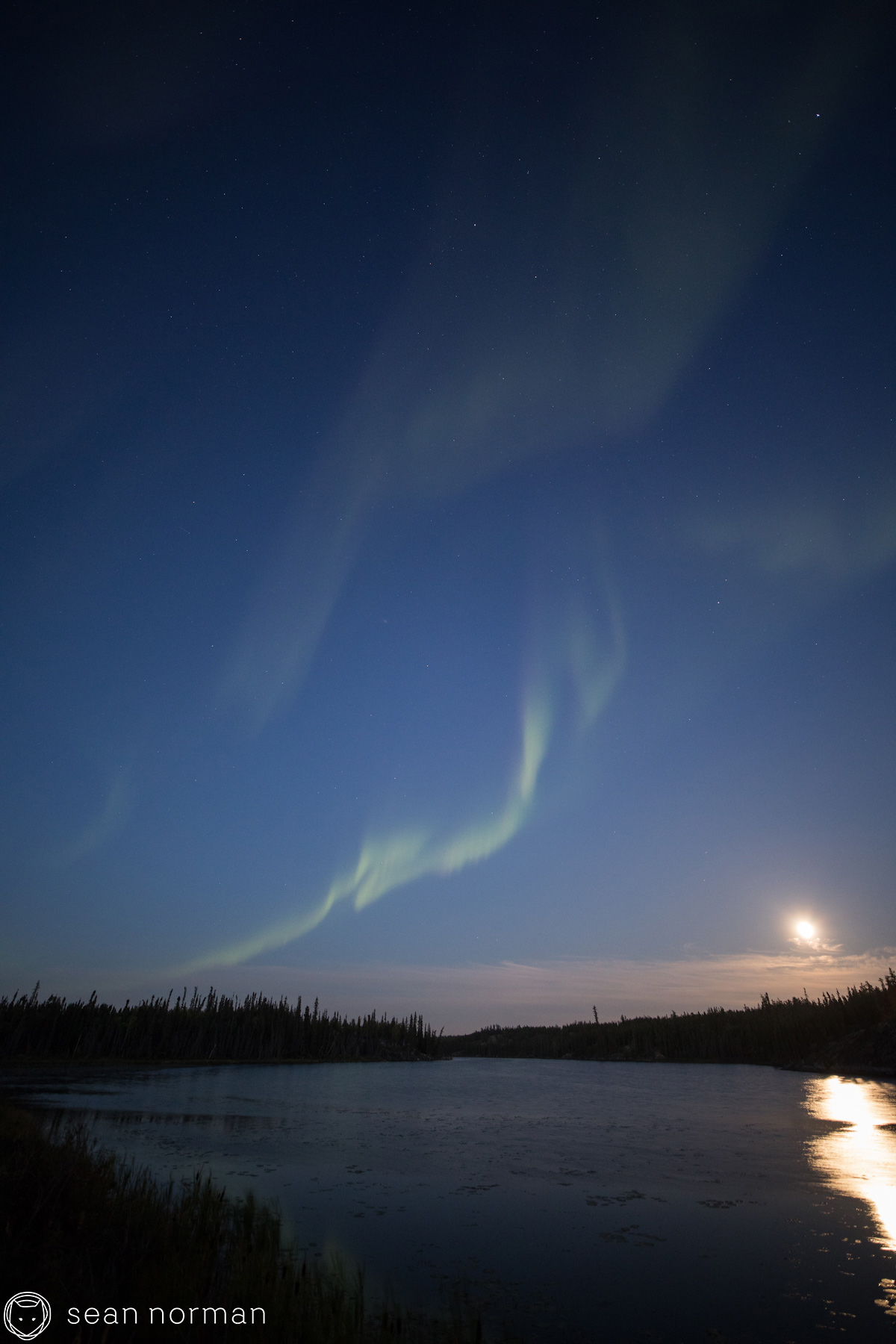 Sean Norman - Yellowknife Aurora Hunting Tour - 1.jpg