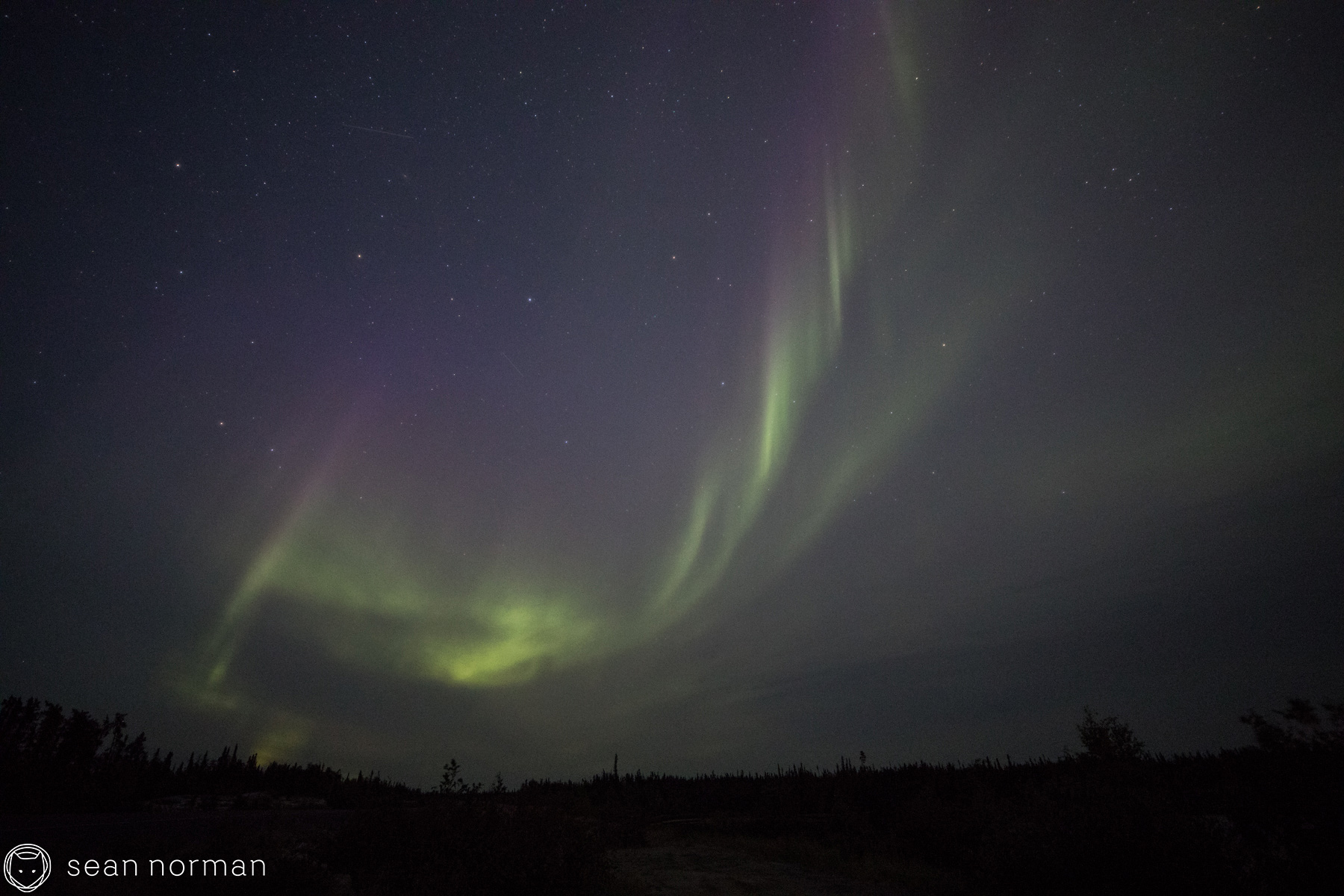 Yellowknife Summer Aurora - Sean Norman Aurora Guide - 2.jpg