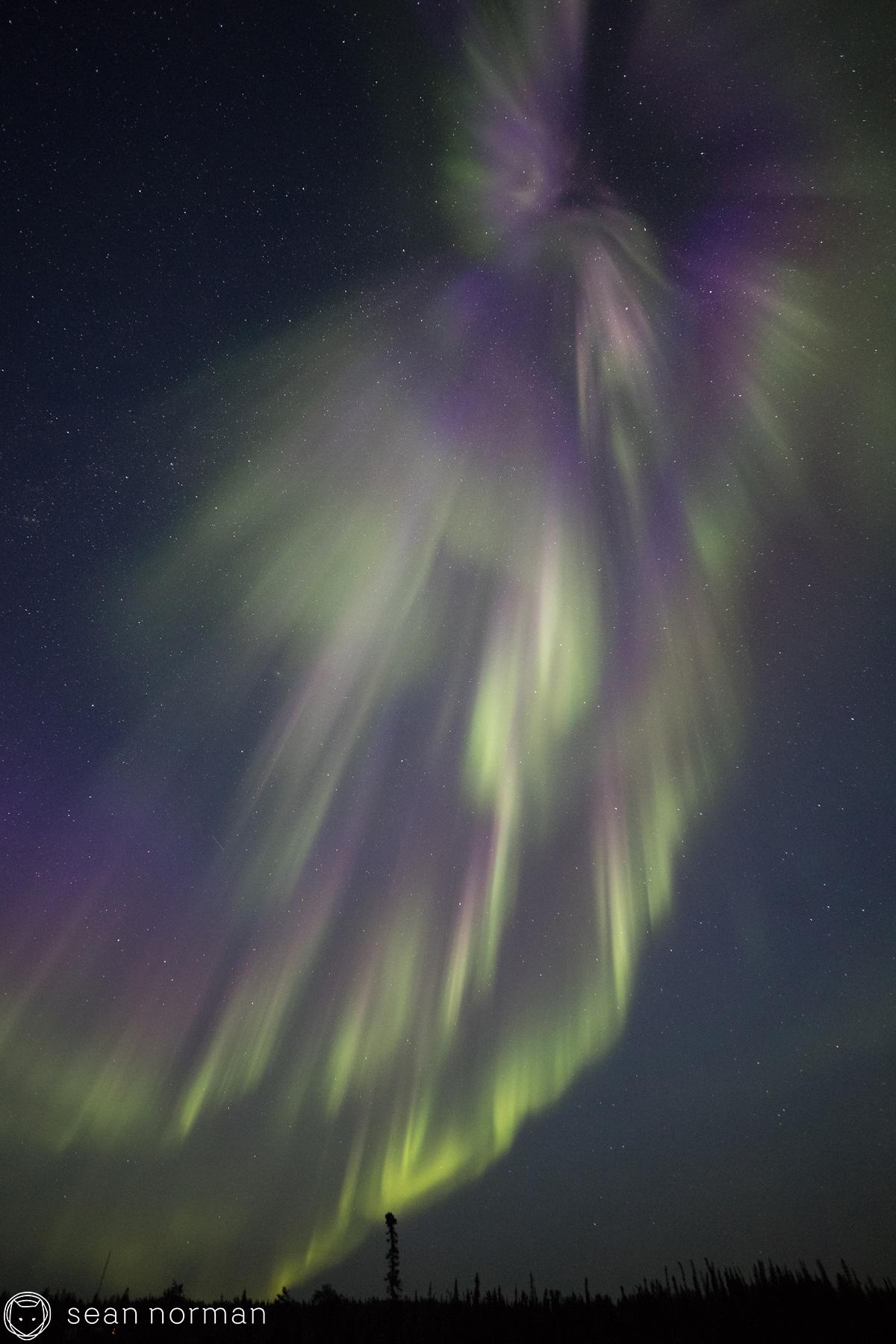 Yellowknife Aurora Tour - Sean Norman Aurora Guide - 5.jpg